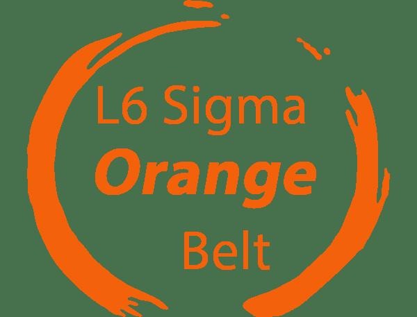 six sigma orange belt