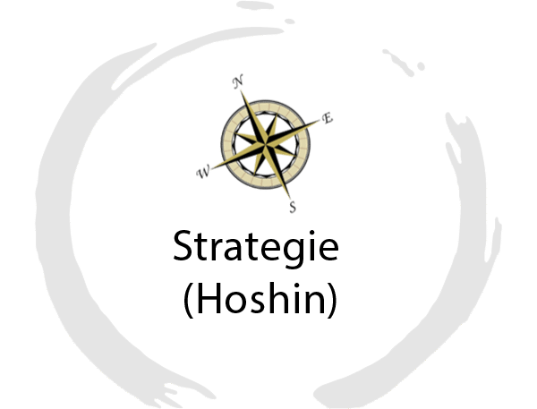 hoshin strategie